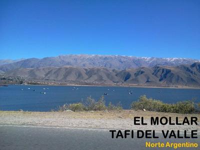 Alquiler De Casa En (tafi Del Valle)el Mollar