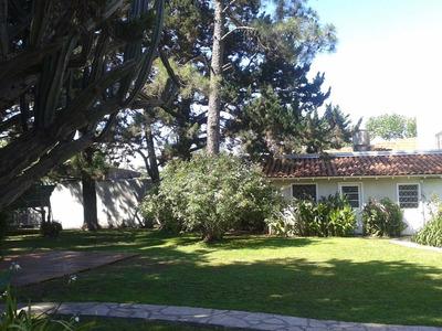 Alquiler Temporario Casa Quinta Zona Sur