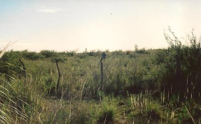 Vendo 52has,inmueble Rural Con Gran Reservorio De Agua