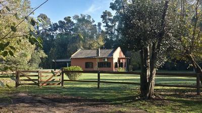 Alquilo Casa Quinta En Zona Sur Apta 9 Personas