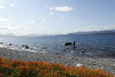 Alquiler Casa En Bariloche Con Costa De Lago